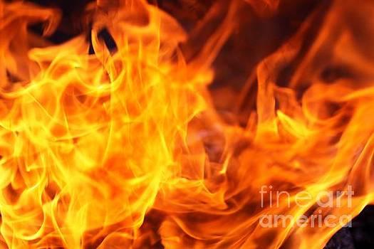 Burn by Patricia Alexander