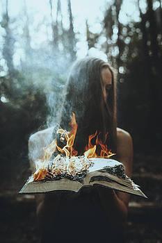 Burn by TJ Drysdale