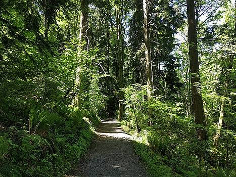 Jordan Barnes - Burnaby Mountain trail