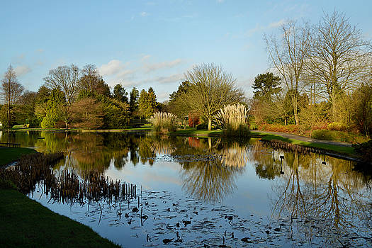 Burnby Hall Gardens by Sarah Couzens