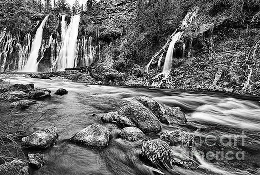 Jamie Pham - Burney Falls Flow