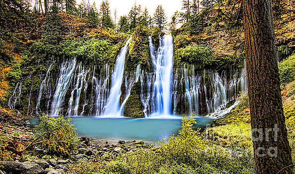 Burney Falls by Jason Abando