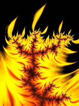 Burning fractal flames warm yellow and orange by Matthias Hauser