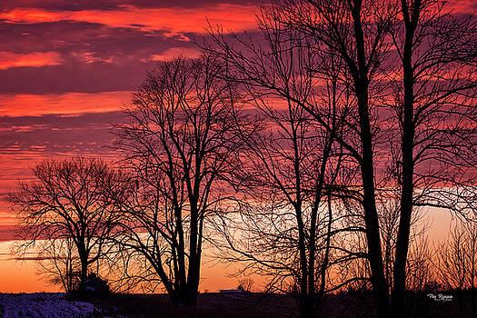 Burning Sky by Peg Runyan