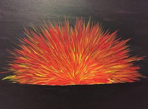 Burning Sun by Chris Bishop