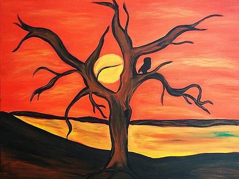 Burning Sunset by Carlos Alvarado