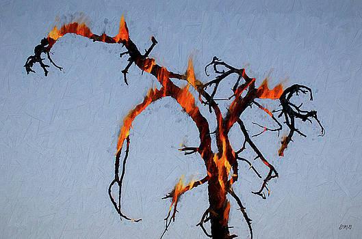 David Gordon - Burning Tree