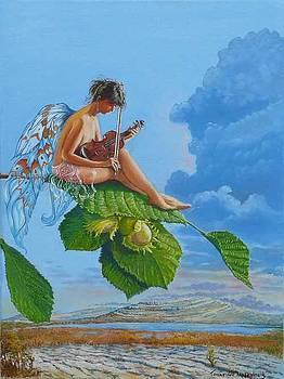 Burren Fairy by Tomas OMaoldomhnaigh