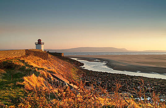 Burry Port 9 by Phil Fitzsimmons