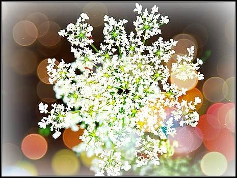 Burst of Light Kaleidoscope by Deborah Kunesh