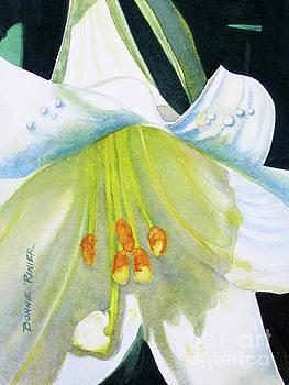 Bursting Lily by Bonnie Rinier