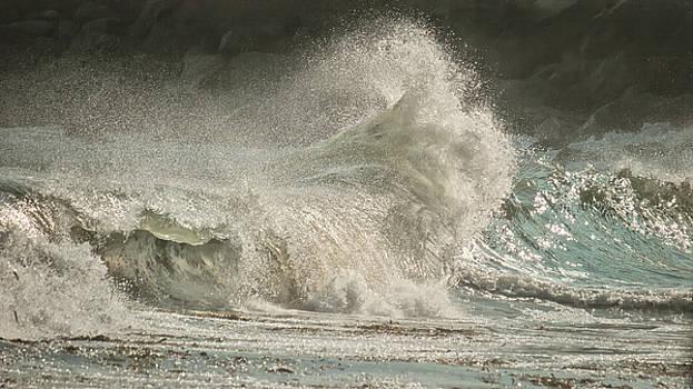 Bursting Wave by Lisa Chorny