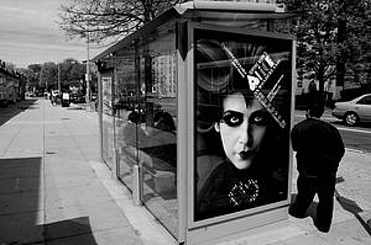 Bus Shelter  by Llewellyn Berry
