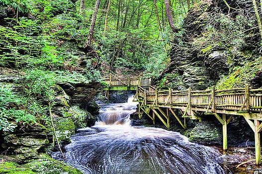David Hahn - Bushkill Falls I