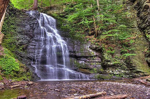 David Hahn - Bushkill Falls II