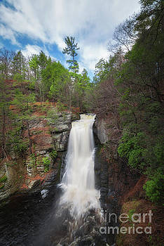 Bushkill Falls  by Michael Ver Sprill