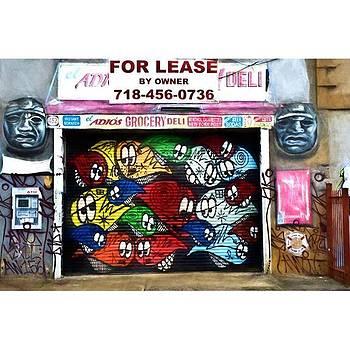 Bushwick  Street Art #graffiti by Visions Photography by LisaMarie