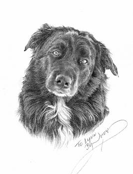 Buster by Judith Angell Meyer