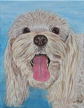 Buster by Nancy Nale