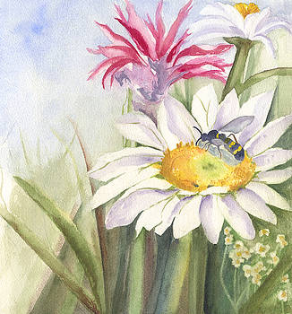 Busy Wasp by Wendy Cunico