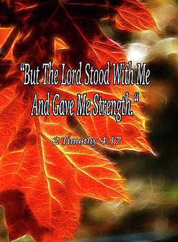 But the Lord Stood with Me by Lisa Stanley