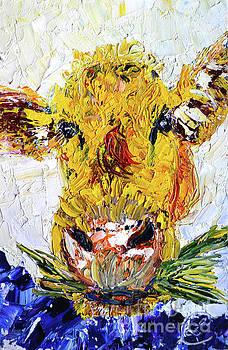 Butter by Lynda Cookson