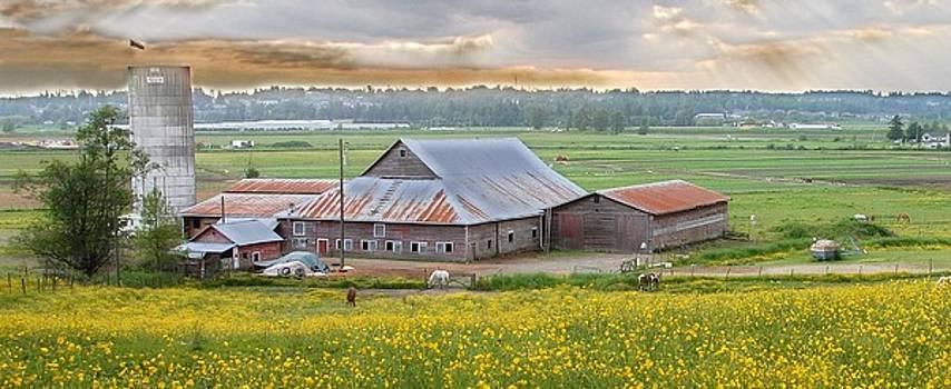 Bill Kellett - ButterCup Farm