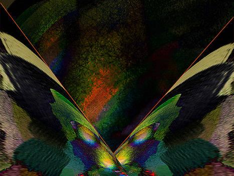 Butterflies 1 by Ricardo Szekely