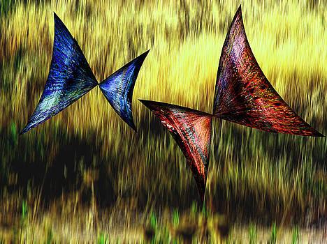 Butterflies 4 by Ricardo Szekely