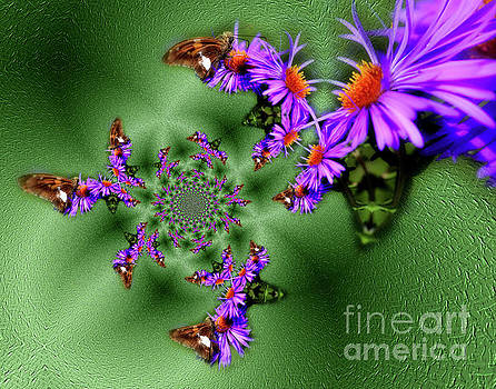 Butterflies Abstract by Smilin Eyes  Treasures
