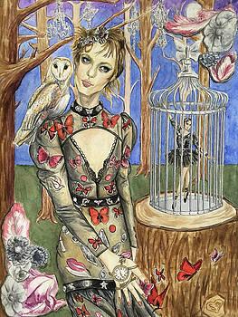 Butterflies and Ballet by Sabina Mollot