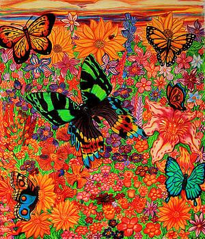 Nick Gustafson - Butterflies and Flowers