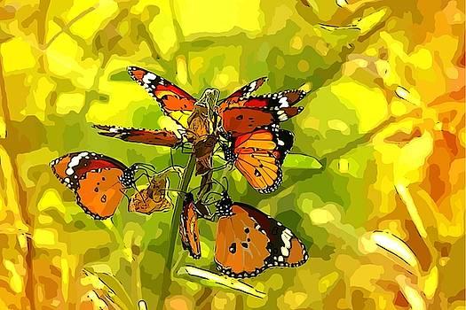 Butterflies by Ankeeta Bansal