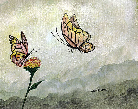 Butterflies by Edwin Alverio