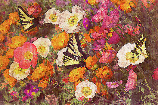 Butterflies in the Poppies by Vanessa Thomas