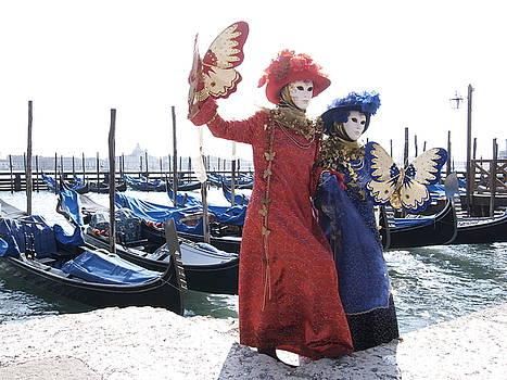 Butterflies in Venice by Steve Bisgrove