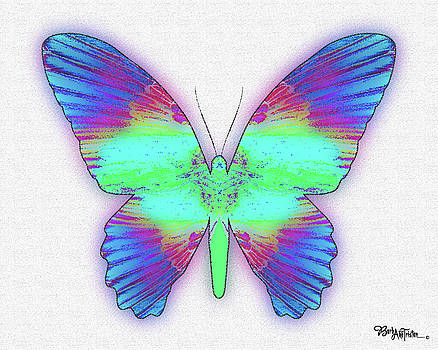 Butterfly Poise #024 by Barbara Tristan