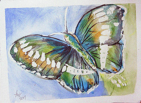Butterfly 2 by Loretta Nash