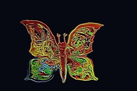 Butterfly 2 by MaryAnn Janzen
