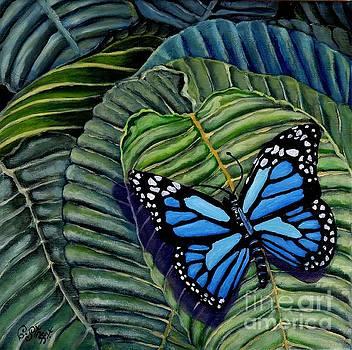 Caroline Street - Butterfly Blue