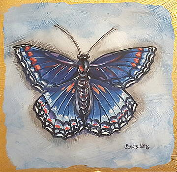 Butterfly Blue Study by Sandra Lett
