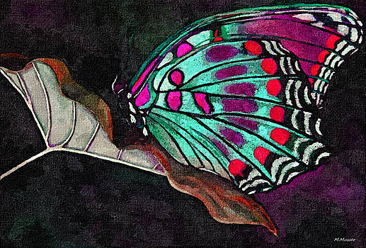 Butterfly by Damussman Arnold