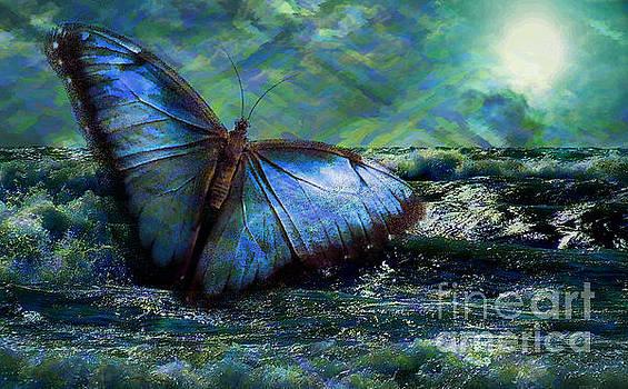 Kathryn Strick - Butterfly Dreams 2015
