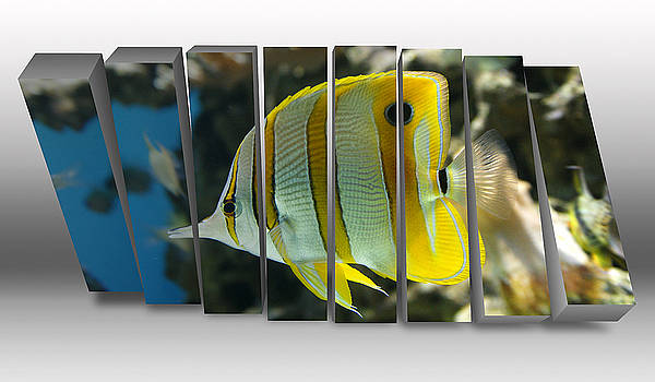 Butterfly Fish Saltwater by Marvin Blaine
