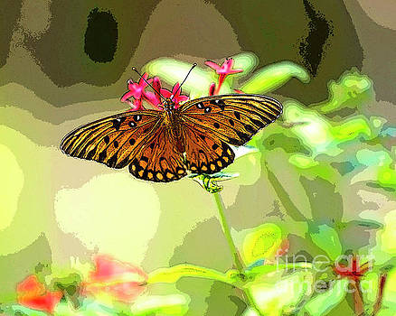 Butterfly Flutter by by Richard Burr