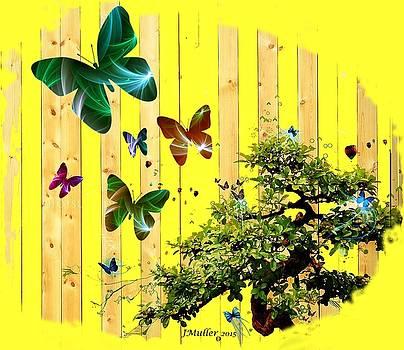 Butterfly Garden by Jennifer Muller