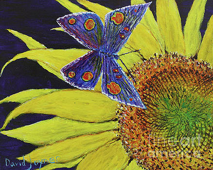 Butterfly Haven by David Joyner