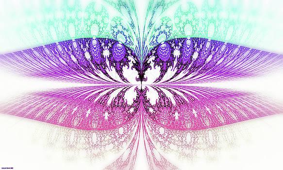 Butterfly II. by Lorant Zsolt