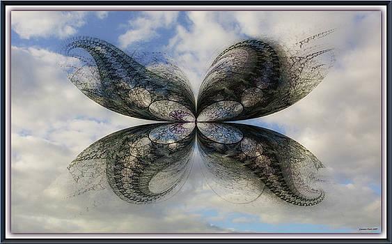 Butterfly III. by Lorant Zsolt