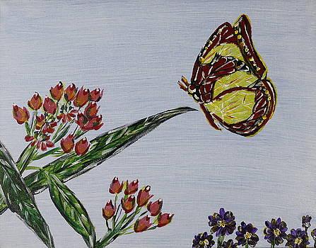 Butterfly in a garden by Seema Varma